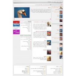 طراحی سایت خبری (نقره ای)