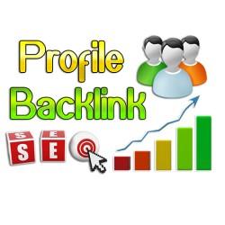 100 بک لینک پروفایل