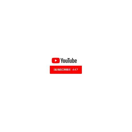 مشترک یوتیوب Subscribers